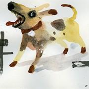 Perros urbanos 4