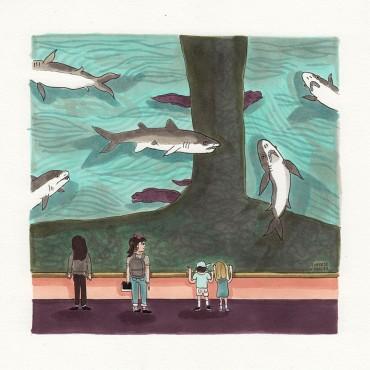 Excursión al acuario: Tiburones